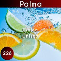 Perfume imitación palma