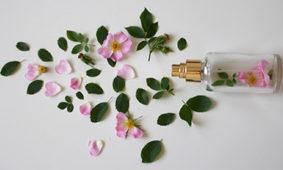Conservación de los perfumes