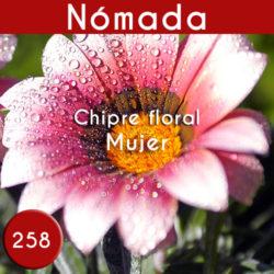 Perfume Imitación Chloe Nomade