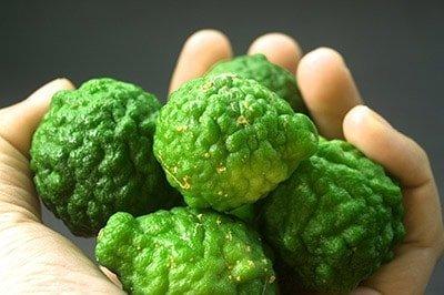 Frutos de bergamota