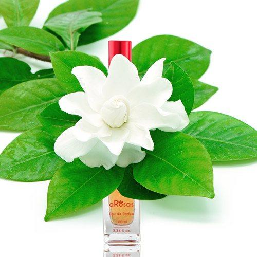 Perfumes con notas de Gardenias